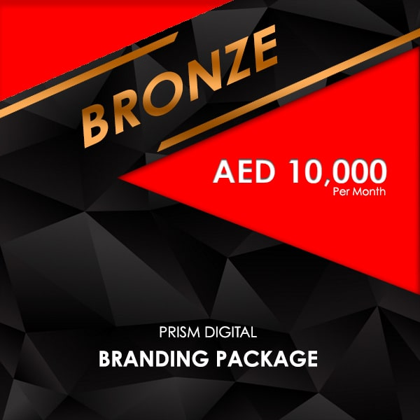 Bronze Seo Packages
