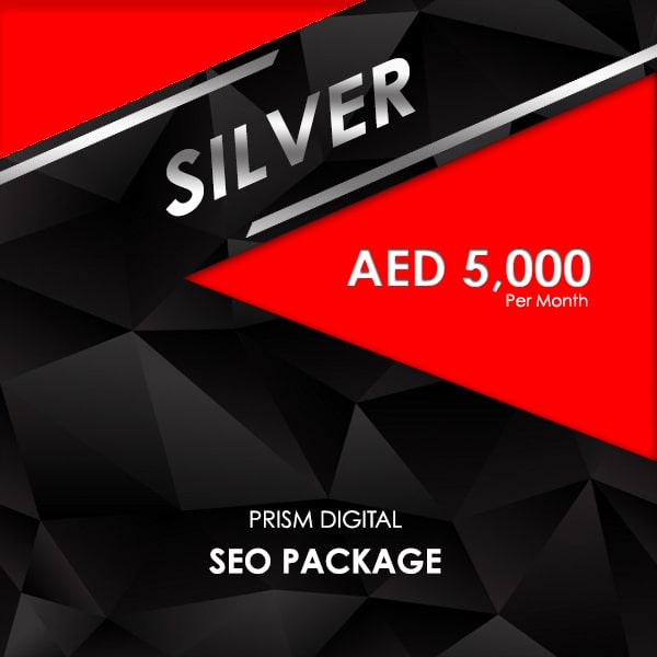 Silver Seo Packages